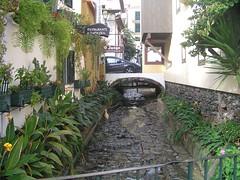 Funchal, Madeira , NGID480245790 (naturgucker.de) Tags: ngid480245790 naturguckerde funchal cwolfgangkatz