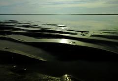 (2016) (008) (krlo_Ox) Tags: uk crosby sand sunset lowtide contrast backlighting underexposure irishsea horizon reflection unreal hue krloox