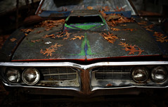 fallen firebird (jtr27) Tags: dsc05007 jtr27 sony alpha alpha7 a7 ilce7 ilce csc mirrorless canon fd fdn nfd 50mm f14 manualfocus pontiac firebird maine junkyard newengland