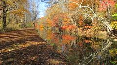 D&R Canal (gumulak) Tags: canal trenton mercercounty newjersey