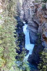 The Lower Falls (Patricia Henschen) Tags: banff nationalpark alberta canada banffnationalpark parkscanada parcs parks trail johnstoncanyon johnstoncreek waterfalls waterfall hike canyon creek canadianrockies lowerfalls