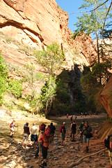 The Narrows - Zion Canyon National Park, UT (appaIoosa) Tags: ©appaloosa ©appaloosaallrightsreserved utah zion zionnationalpark zioncanyonnationalpark thenarrows