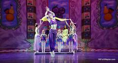 The Fort Wayne Ballet's Nutcracker (rsteup) Tags: ballet fortwaynein fortwayneindiana fortwayneballet