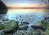 Pennington Flash (Jeffpmcdonald) Tags: penningtonflash pennington lowton leigh greatermanchester countrypark naturereserve nikon d nikond7000 jeffpmcdonald nov2016 ice