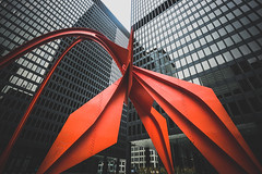 Bird is the word (_soliveyourlife_) Tags: pelican flamingo art chicago sony sonyimages city cityscape