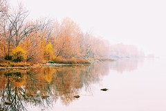 Fog Gradient Au Naturel (amarilloladi) Tags: trees autumn fall washington pacificnorthwest snakeriver river mist fog
