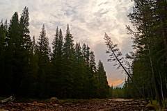 Sunrise Tuolumne River (Yosemite Love) Tags: mountains sunrise yosemite rivers yosemitenationalpark ynp tuolumnemeadows godscountry tiogapass sierranevadamountains tuolumneriver yosemitelove925