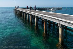 Warm Spring Days, St Leonards (Leanne Cole) Tags: summer beach coast pier spring nikon photographer photos images environment stleonards fineartphotography warmweather landscapephotography environmentalphotography fineartphotographer environmentalphotographer leannecole leannecolephotography