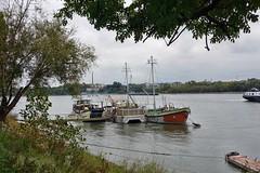 in Kln-Wei am Rhein (mama knipst!) Tags: rhine rhein schiff klnweis