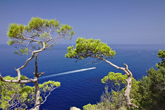 blue and green and boat (GOLDFOCUS) Tags: ocean blue sea summer coast meer warm blau mallorca 2015 goldfocus