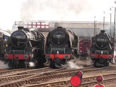 BR 45305, 46233 & 45690 @ Barrow Hill Roundhouse (Sim0nTrains Photos) Tags: br steamlocomotive lms britishrailways 45305 5xp stanierblack5 barrowhillroundhouse 6233duchessofsutherland lmsjubilee lmsblack5 lmsprincesscoronationclass williamstanier atickettoride lmslocomotive 45690leander 46233duchessofsutherland lmsgala