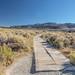 South Tufa Trail