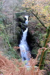 Photo of Aira Force..