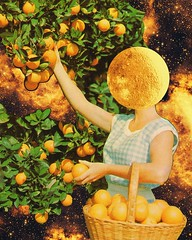 Space fruit (Mariano Peccinetti Collage Art) Tags: flowers art collage kids vintage 60s arte surrealism dream surreal retro lsd 70s surrealist meditation trippy psychedelic psych cutandpaste dmt picnicday globular vintageart collageartist peccinetti collagealinfinito marianopeccinetti collageartcollagecollectiveco