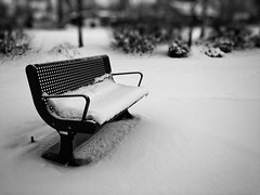 December chill. #cold #winter #snow #jeromeidaho #bench #idaho #frost #blackandwhite #blackandgrey #contrast #iphone #iphone6s #ios #december #chilly #beauty (aulternateimages1) Tags: winter blackandwhite snow cold beauty contrast bench frost december idaho chilly ios iphone blackandgrey jeromeidaho iphone6s
