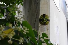Intra Larue 822 (intra.larue) Tags: intra urbain urban art moulage sein pecho moulding breast teta seno brust formen tton street arte urbano pit paris france boob urbana peto tetta