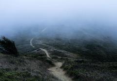 Sentiero - Trail (Lalalleba) Tags: trial coastaltrial sanfrancisco california fog path sentiero montagna