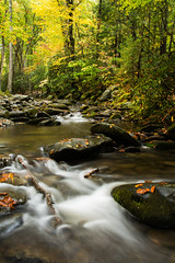Fall in Cades Cove (outsideshot) Tags: stream fall color smokymountains flowingwater cadescove