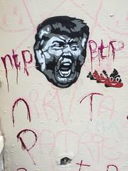 Street Art - Lyon, France (cinder85212) Tags: streetart france lyon trump