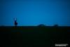 Brame 2016 (Vianney Vaubourg) Tags: cerf daguet faon cervidé brame animalier nature vosges lorraine france herbe bokeh rut nikon d3s fx nikkor 400f28 400 mm f28 fl vr vaubourg vianney photographie 2016 by bois biche extérieur animal contre jour contrejour ciel naturebynikon