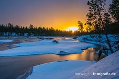 DSC01915 (norwegen-fotografie.de) Tags: norw norwegen norway norge femunden femundsmarka villmark hedmark see wildnis wald landschaft