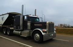 Black Eagle (jr-transport) Tags: peterbilt 389 btrain pride class grain