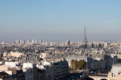 IMG_9675 (Irirarara) Tags: paris francia france notredame airelibre arquitectura cielo torreeiffel