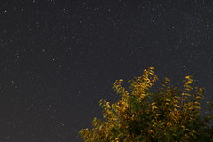 Stars (SmilingGhost) Tags: canoneos70d canonef24mmf14liiusm