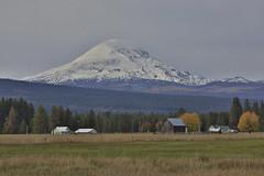Mt Adams from Camas Prairie (Rick Brumble) Tags: cascaderange mtadams conboylakenwr camasprairie