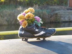Footy Boot Flowers 2 (Thomas Kelly 48) Tags: leedsliverpoolcanal canal burscough gathurst panasonic lumix fz150 boot flowers footyboot footybootflowers
