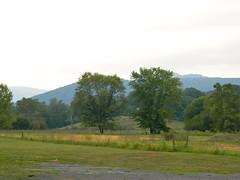 Cooters in Sperryville (Photo Squirrel) Tags: sperryvilleva mountians virginia tree field rural evening