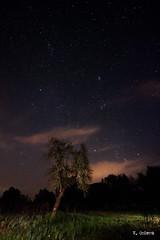 Puntitos blancos en el cielo (Vctor Onieva) Tags: estrellas noche nocturna via lactea vialactea arbol cielo nubes iluminacin