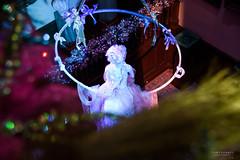 DSC_2290 (TDG-77) Tags: nikon d750 24120mm f4 chatsworth house gardens christmas theme nutcracker