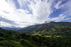 _DSC9744 (nonesmanneslond) Tags: finca barbosa colombia antioquia medellin farm farmlife