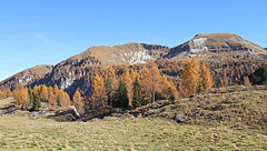 Agnelezze - Dolomiti Bellunesi National Park (ab.130722jvkz) Tags: italy veneto alps easternalps dolomites vettefeltrinegroup mountains reservesandnationalparks