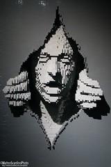 The Art Of The Brick (30) (Matteo Scardino) Tags: theartofthebrick tha art brick lego mattoni mattoncini milano fabbricadelvapore grigio grey faccia