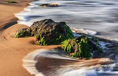 Unwavering (HelenC2008) Tags: maui hawaii wailea beach sunrise rock tide nikon d810 hhc greatphotographers