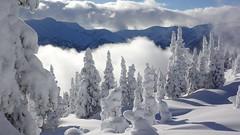 Winter Wonderland (cowgirlrightup) Tags: cloud cowgirlrightup thegreatwhitenorth winterwonderland