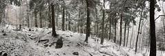 IMG_5062 (pwbaker) Tags: adirondacks adirondack mountain hiking scenic newyork outdoors pano iphone