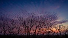 Sunset / Cervia 2016 (MARCELLO ZAVALLONI) Tags: saline salt flats cervia sunset 2016