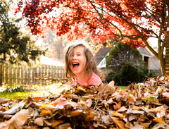 Having Fun in the Leaves (Geoff Livingston) Tags: leaves autumn scene red maple tree kid daughter backyard child girl portrait fun