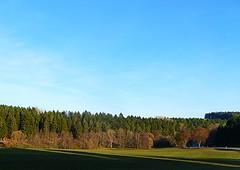 SPTHERBST IM SCHWARZWALD (ehbub@yahoo.de) Tags: schwarzwald nadelbaum laubbaum wiese