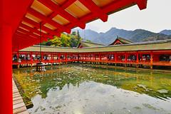 厳島神社2 (Kimiron) Tags: sigma sdq sdquattro foveon art 1224mm itsukushima miyajima hiroshima japan