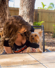 Kalli and Zoey (191) (BuccaneerBoy) Tags: yorkie yorkshireterrier puppy dog woman girl female hooters hooterscalendargirl florida clearwater largo seminole stpetersburg model beautiful lovely fun family fall autumn november