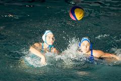 2C040356 (roel.ubels) Tags: len euro league waterpolo sport topsport utrecht uzsc 2016 krommerijn women