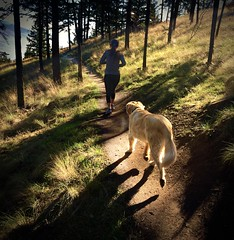 The Path Ahead (evanffitzer) Tags: morning dog forest outdoors path trails running run trail kamloops runner kennacartwrightpark trailrunning iphone6 evanffitzer evanfitzer