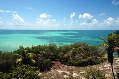 Bahia Honda Beach (mattk1979) Tags: ocean blue usa tree beach water florida turquoise unitedstatesofamerica palm atlantic tropical shrubs bahiahondastatepark
