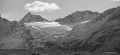 Chugach Mountains, Alaska (gene.mcgill95) Tags: winter blackandwhite mountain snow alaska evening glacier wilderness chugach chugachmountains thompsonpass