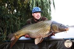 12+ and 13+ beauty carp from Nagyfok