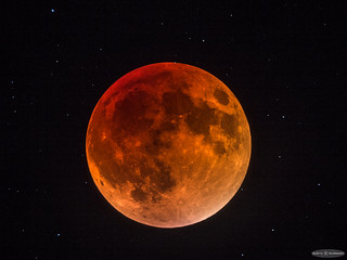 My first Total Lunar Eclipse [Single frame]